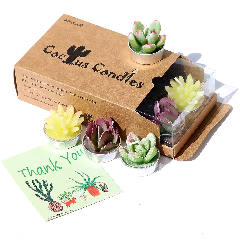 AI·X·IANG Tealight Cactus Candles for Home Decorative Cactus Candles Tea Light Candles ?6 Pcs in Box AiXiAng candle-cactus-mix2