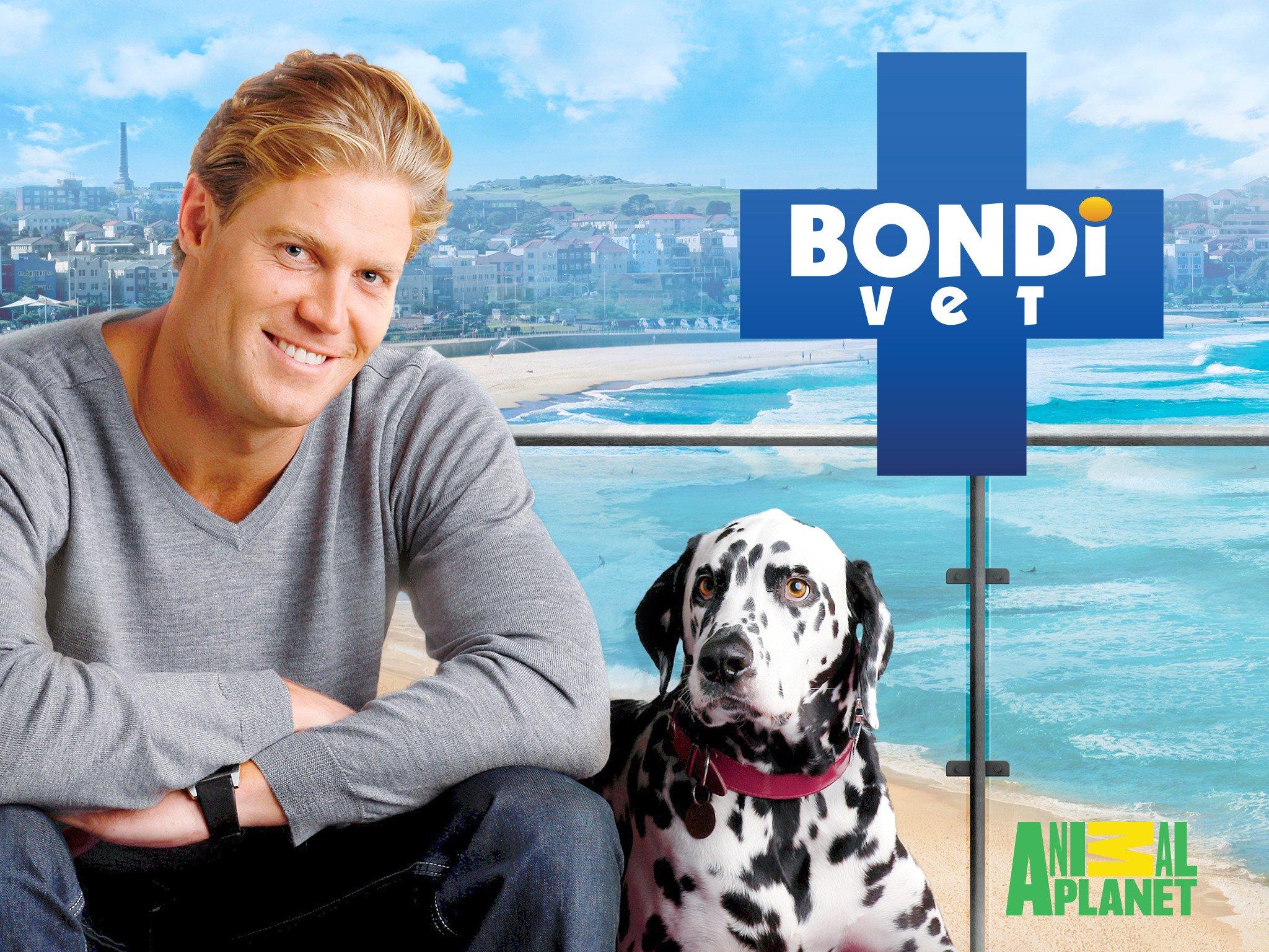 Watch Bondi Vet Season 1 Prime Video