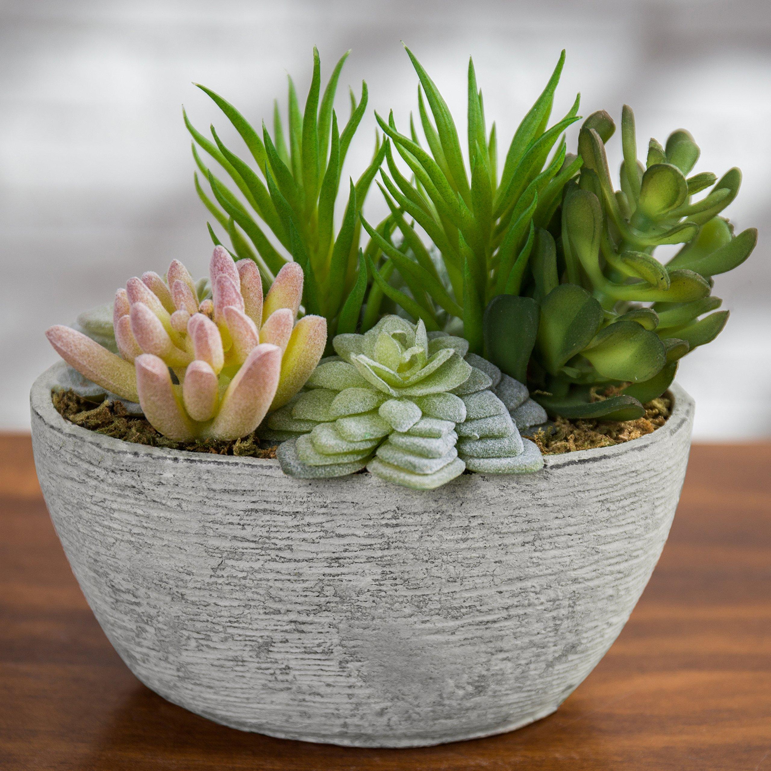 MyGift Tabletop Artificial Succulent Arrangement in Eco-Friendly Pulp Planter Pot