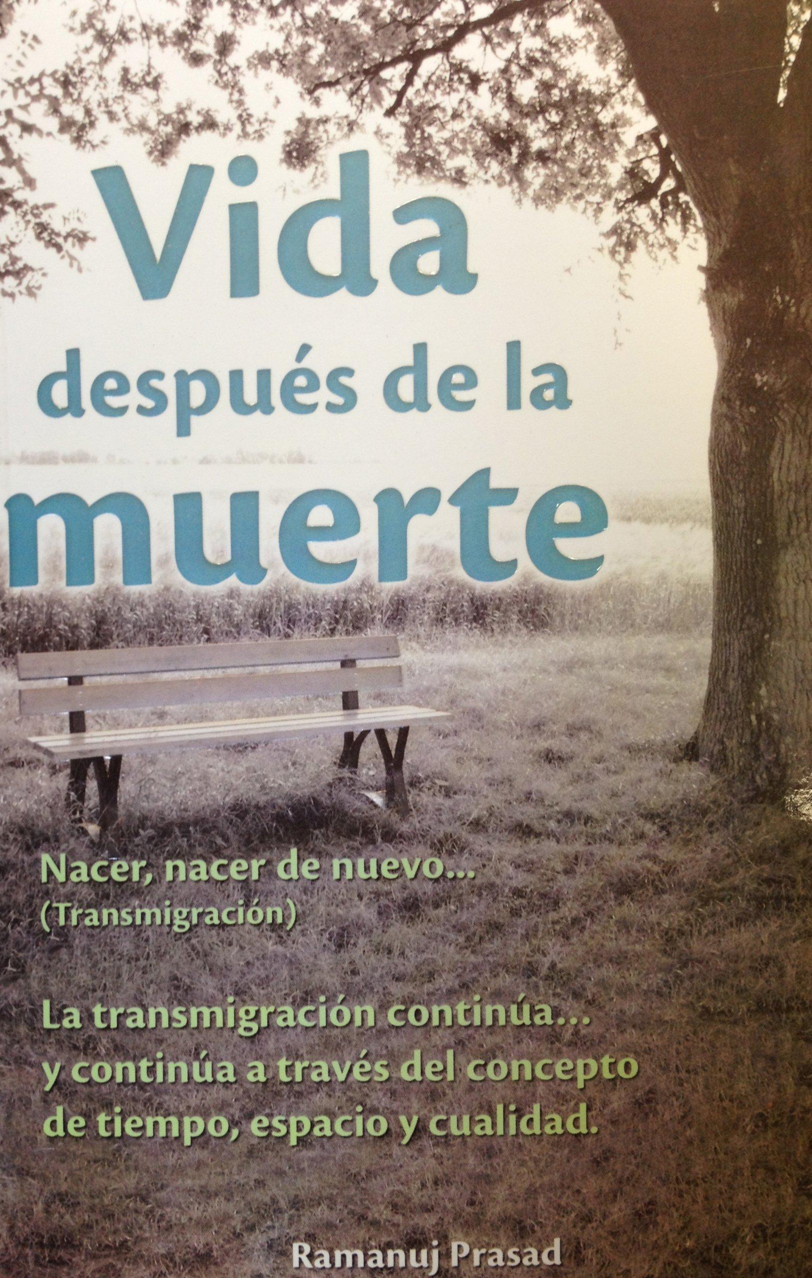 Vida Después De La Muerte / Life After Death (Spanish ...