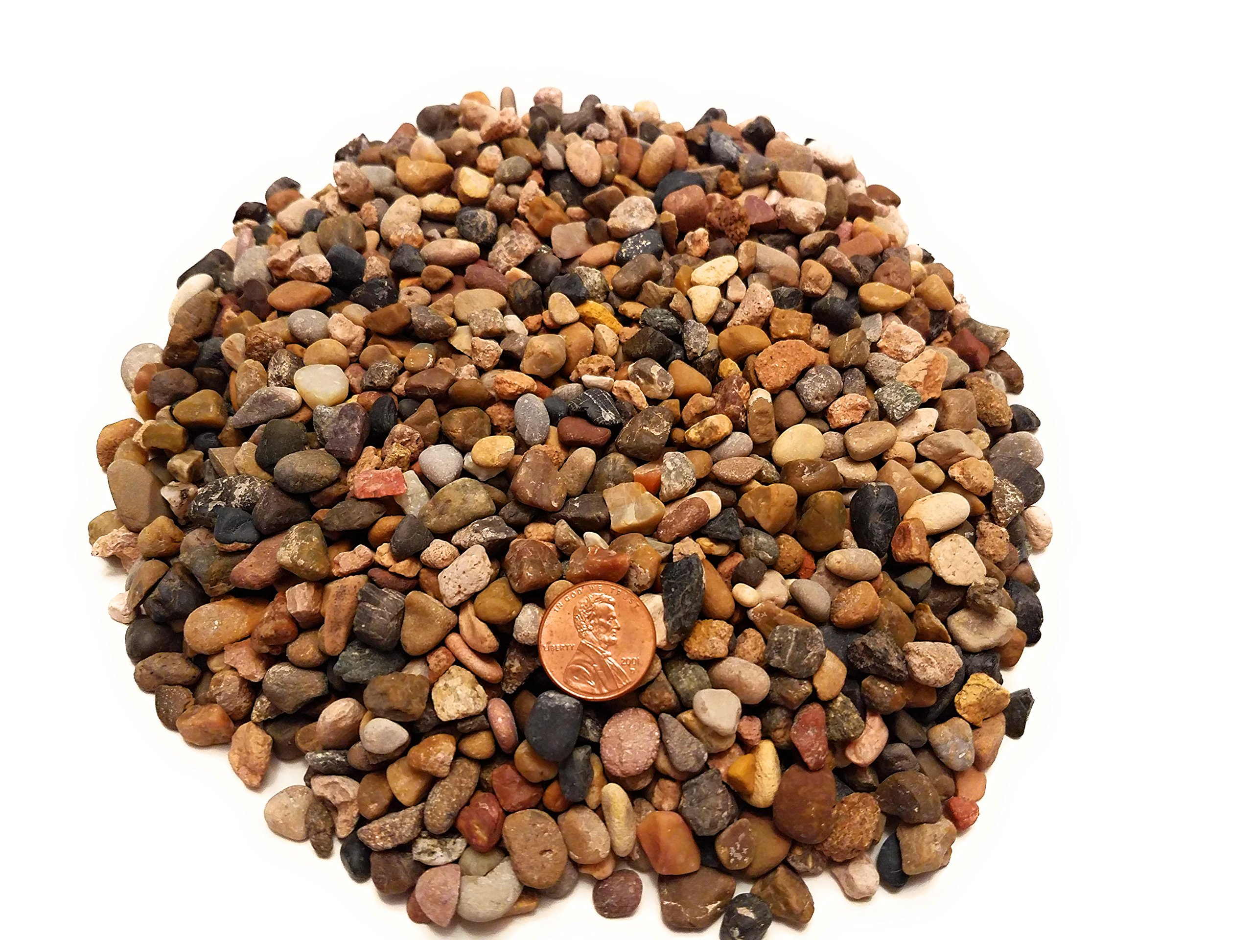 River Rocks for Fairy Gardens, Crafts, Terrariums, Vase Filler, Outdoor Decor by Star-Essence