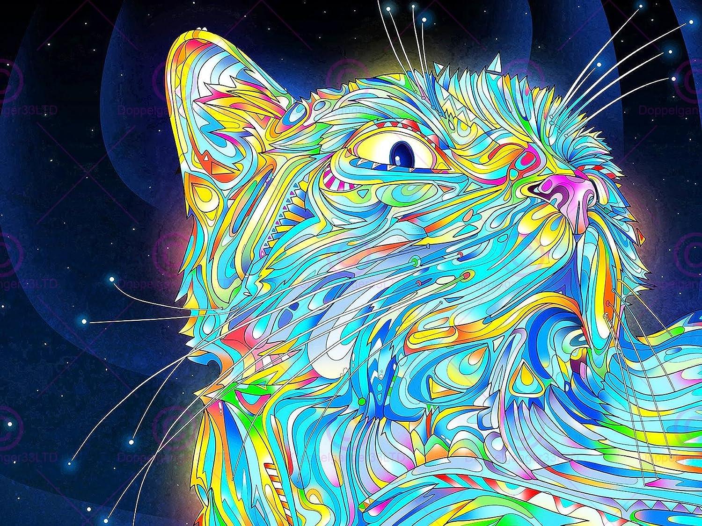 Amazon Com Space Cat