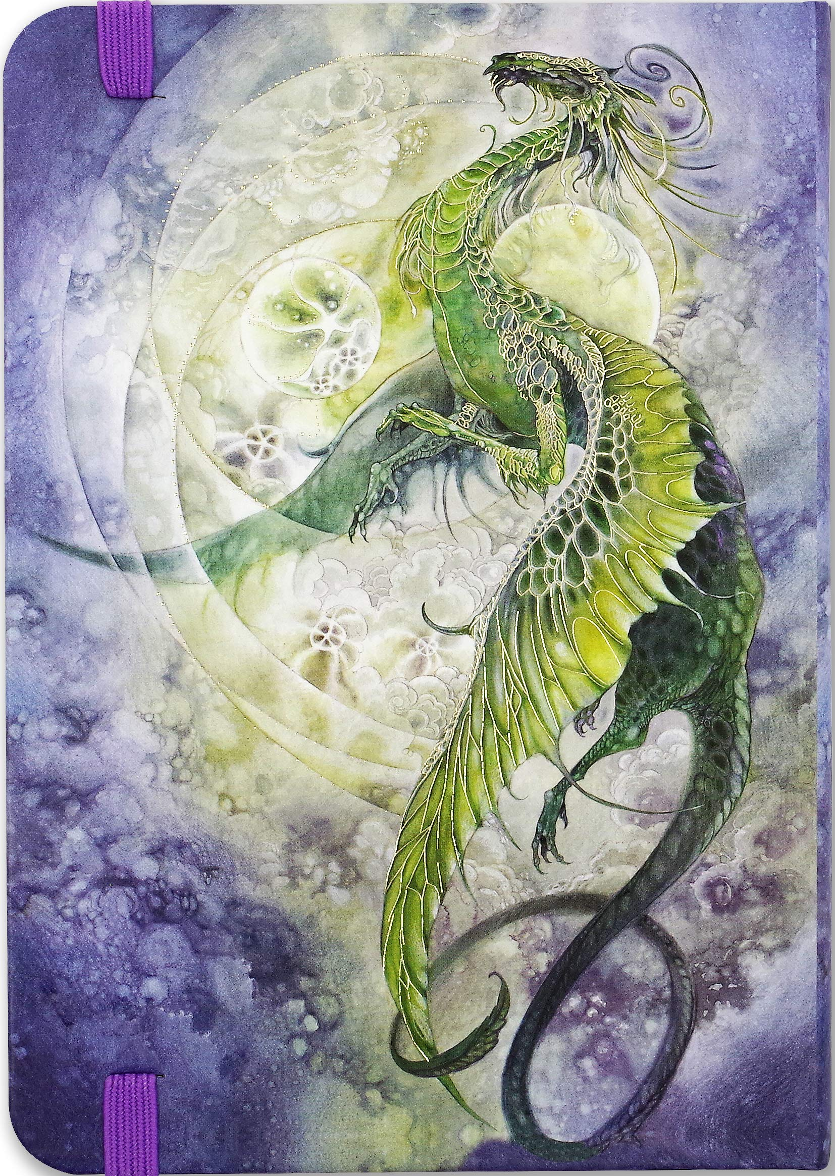 Ssi 2020 Calendar Amazon.com: 2020 Dragon Weekly Planner (16 Month Engagement