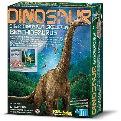 4M Dam 5603237 - Construction et Maquette - Animaux - Kidzlabs - deterre-Ton-Dinosaure - Brachiosaurus