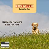 Burt's Bees for Dogs All-Natural Paw & Nose