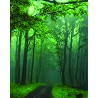 The Wall Art 1-Piece Framed Canvas moonsoon forest
