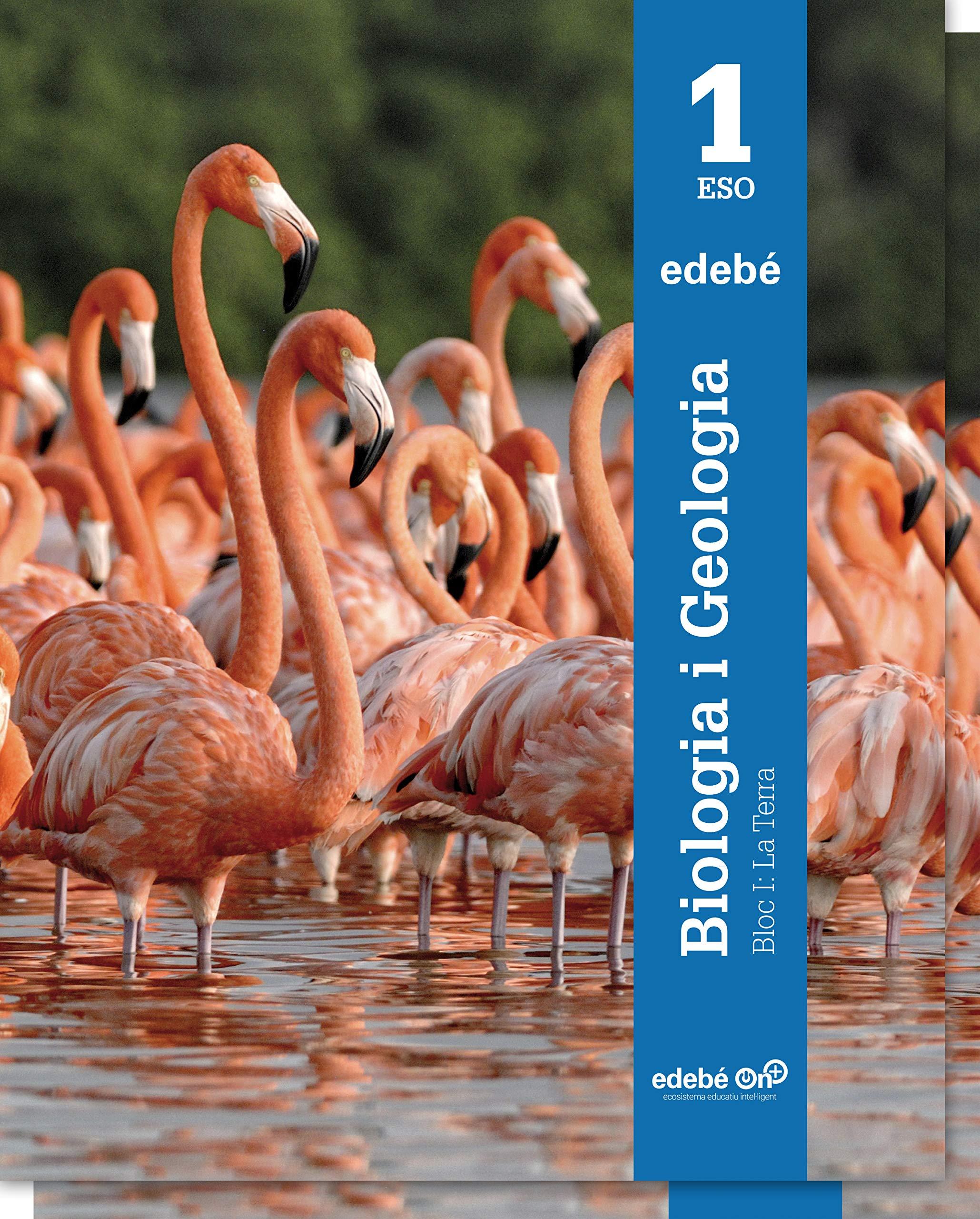 Biologia i Geologia 1 - 9788468320823: Amazon.es: Edebé, Obra ...