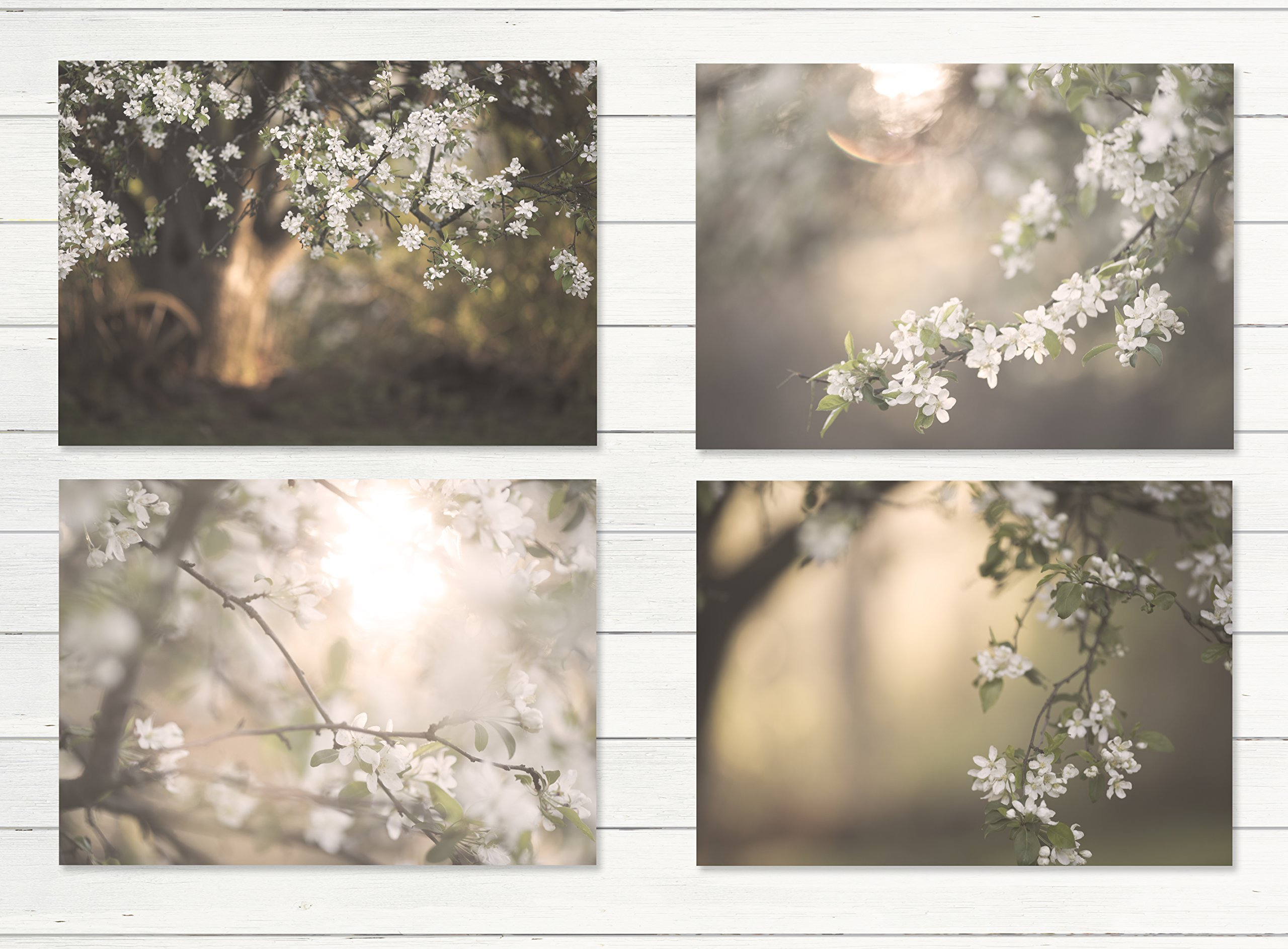 White Apple Tree Cottage Decor 4 - 8''x10'' Prints , Rustic Wall Art, Canvas, Farm Art, Fixer Upper, Floral Shabby, Bathroom, Shabby Cream, Wood Plank Photo