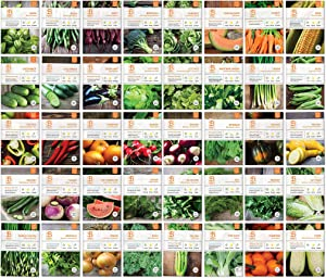 Bentley Seed Co. Set of 40 Vegetable Seeds for Planting - Gardening Seeds to Grow in a Garden or Indoors - Get your own Seeds for Planting Vegetables - Herb Seeds - Garden Seeds Vegetable Variety Pack