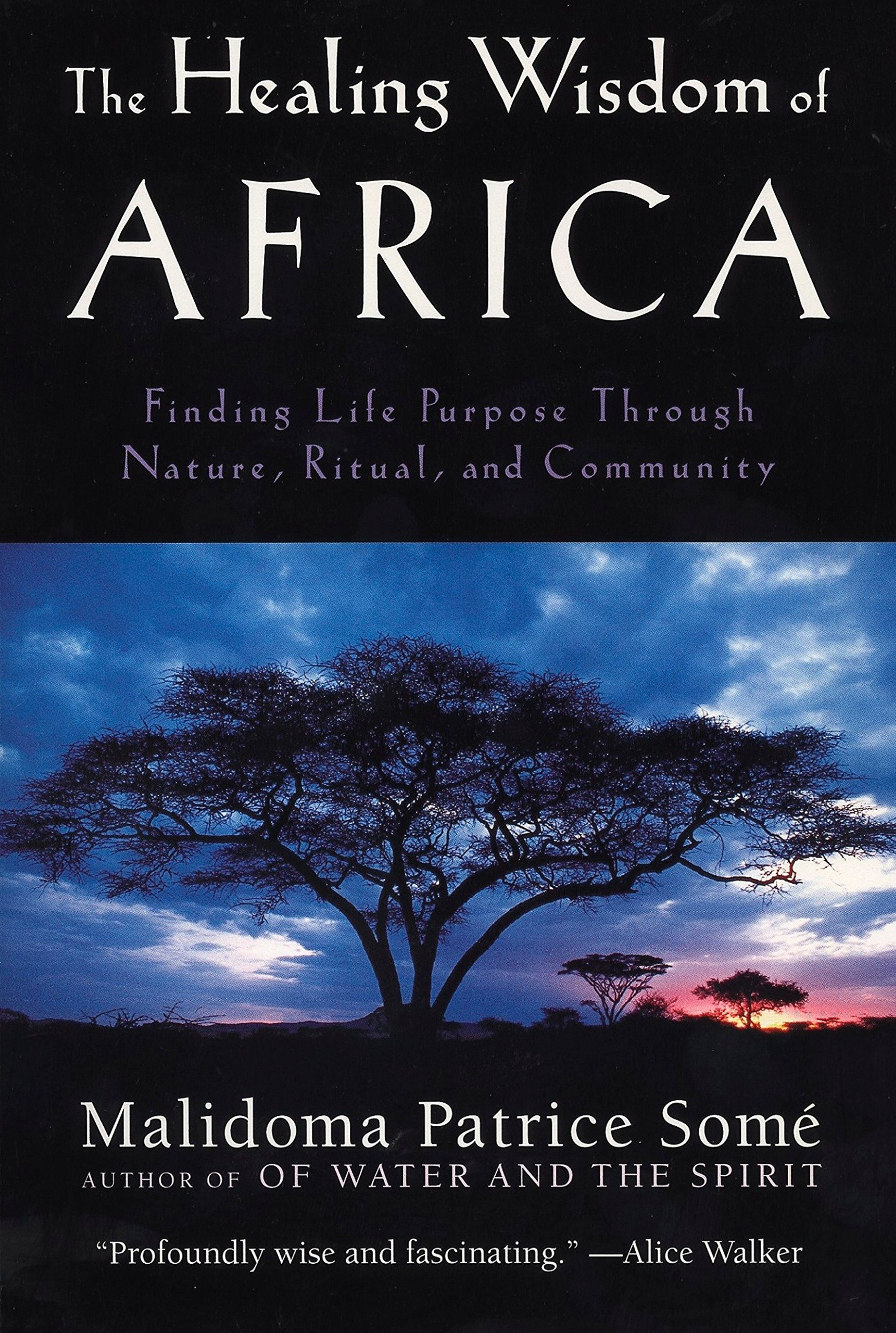 The Healing Wisdom of Africa Finding Life Purpose Through Nature