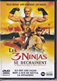 3 Ninjas High Noon at Mega Mountain [1998] [DVD]