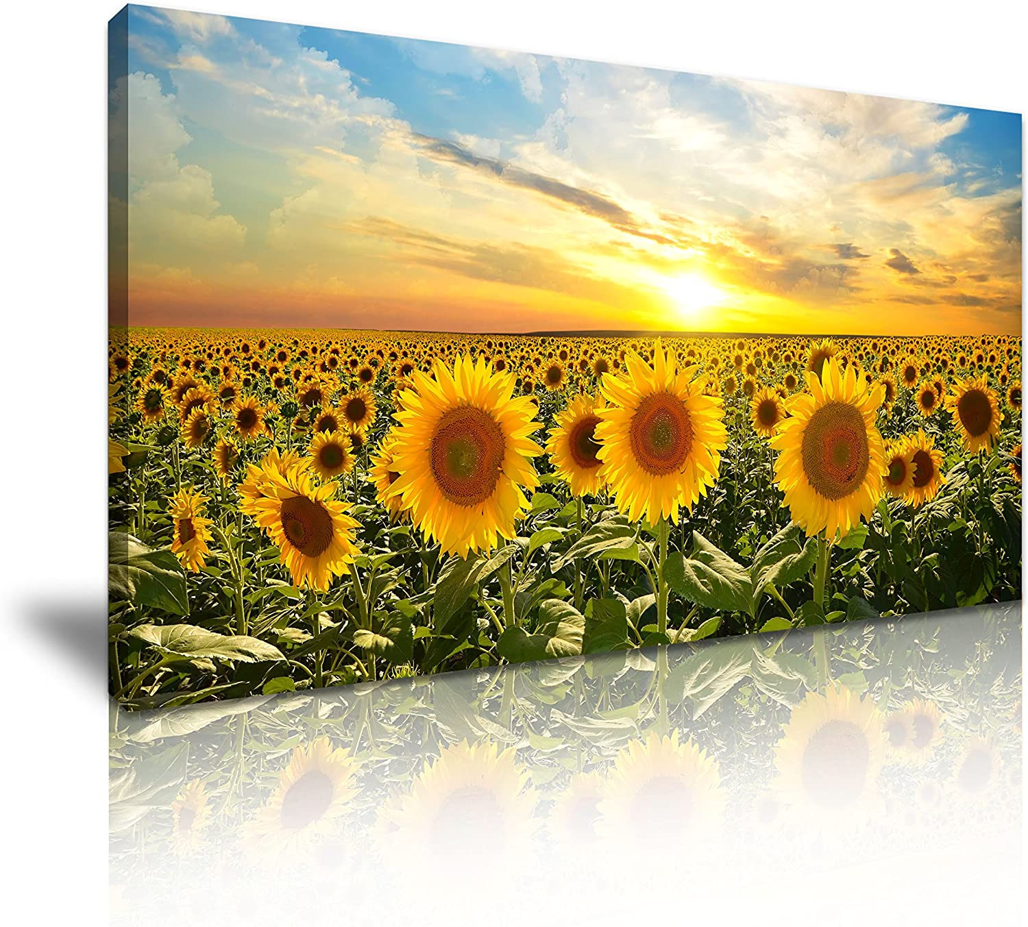Sunflower Canvas Wall Art Picture Print 60x30cm Amazon Co Uk Kitchen Home