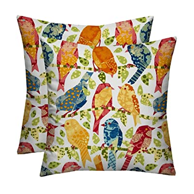 """RSH Décor Indoor Outdoor Set of Decorative Throw/Toss Pillows ~ Ash Hill Garden Birds (2(17""""x17"""") Square Pillow, White with Orange Blue Yellow Red): Home & Kitchen"""