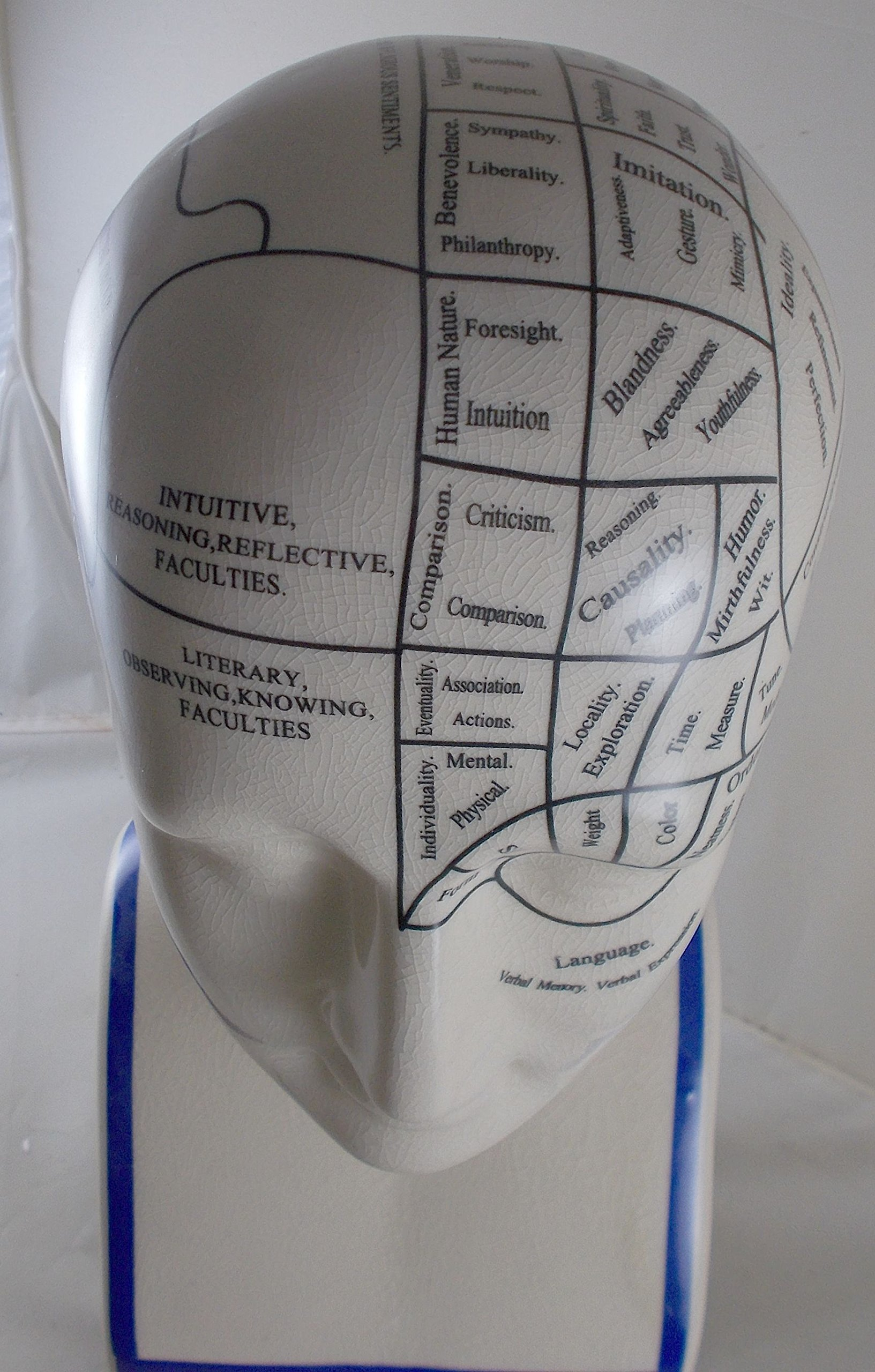 L.N. Fowler Phrenology Head Statue by Magoo's General Store (Image #9)