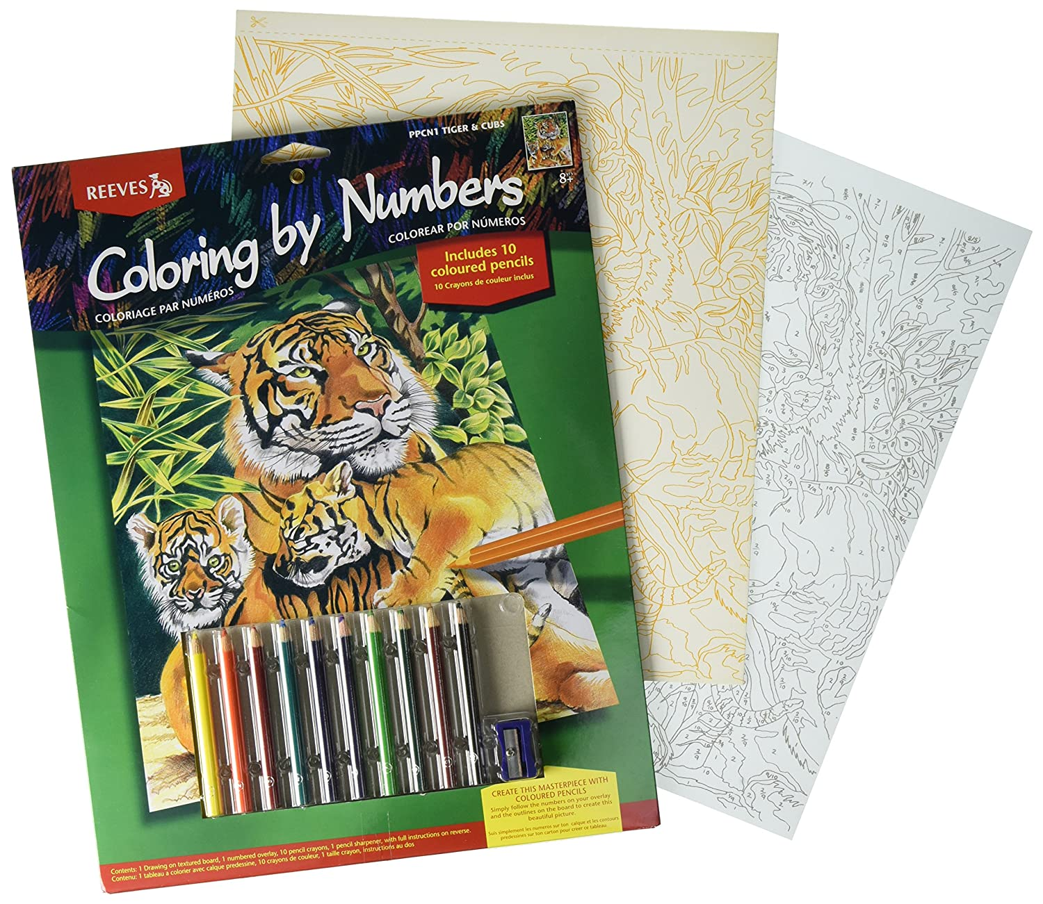 Amazon.com: Reeves Tiger and Cubs Colored Pencil By Numbers: Arts ...