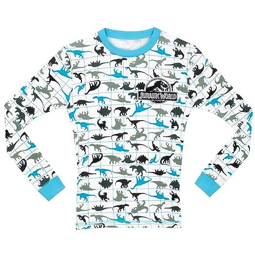 Amazon.com: Jurassic World Boys Jurassic World Pajamas Size 10: Clothing