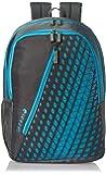 Safari 25 Ltrs Grey Casual Backpack (Seesaw-Grey-CB)