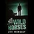 Wild Horses (The Eddie Malloy Series Book 8)