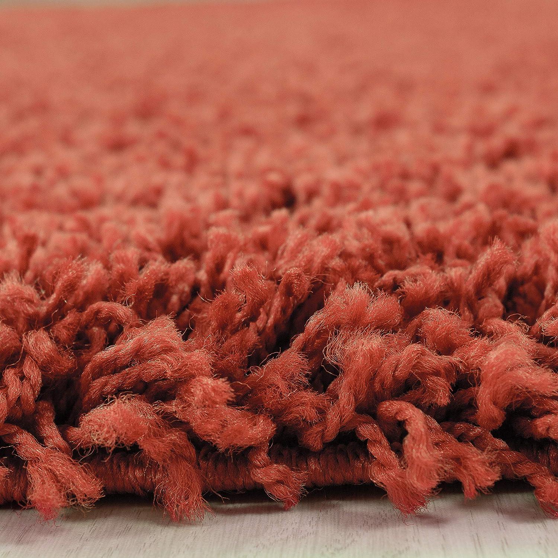Hochflor Shaggy Teppich für Wohnzimmer Wohnzimmer Wohnzimmer Langflor Pflegeleicht Schadsstof geprüft 3 cm Florhöhe Oeko Tex Standarts Teppich, Maße 160x230 cm, Farbe Creme B01HQ7L7HO Teppiche f4e73a