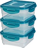 AmazonBasics 3pc Airtight Food Storage Containers Set, 3 x 0.80 Liter,Multicolour