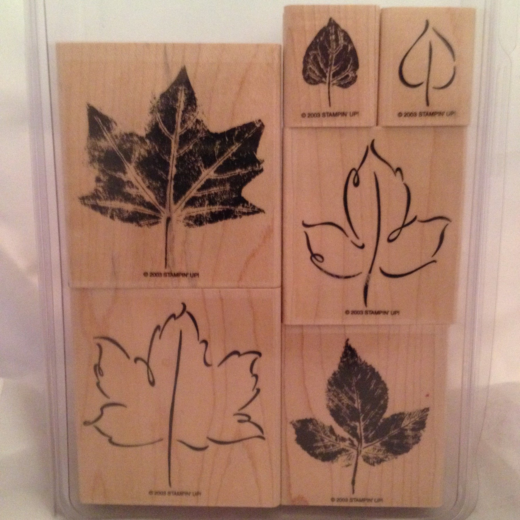 Stampin' Up! Lovely Leaves Two-Step Stampin' Stamp Set