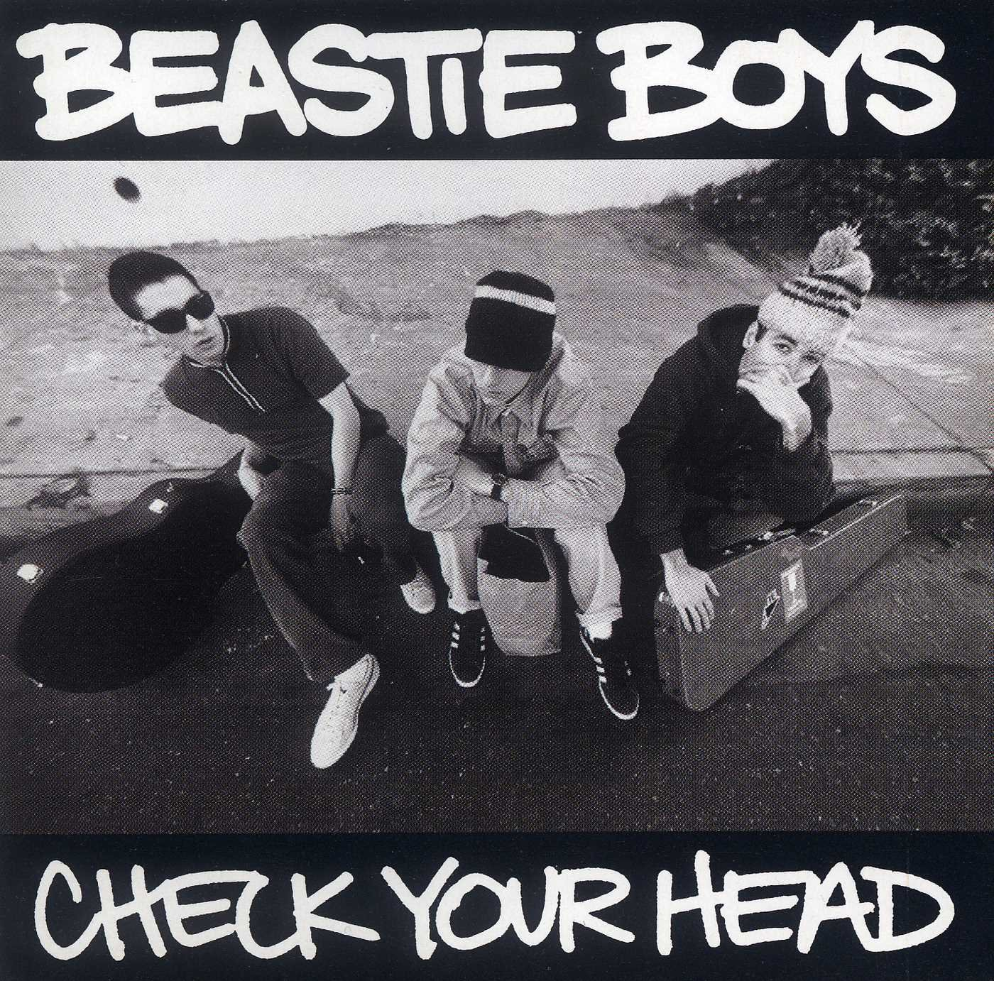 Image result for beastie boys check your head