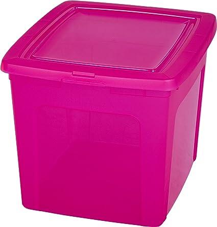 Iris Ohyama Caja de plástico 30 litros, Caja de plástico Rosa, immagazzinoggio plástico,