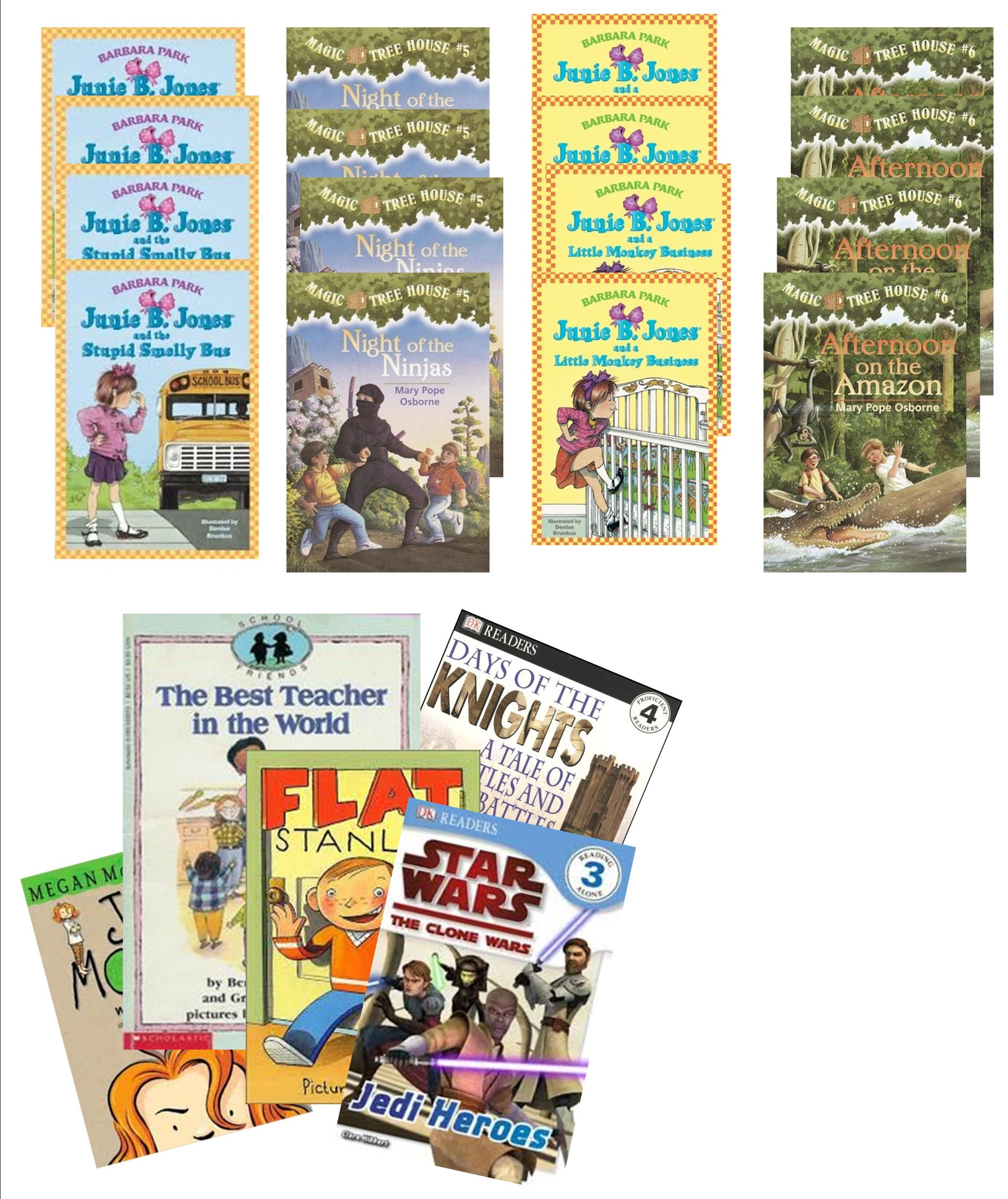 Classroom Library Grade 2: Magic Tree House Night of the Ninjas; Magic Tree House Afternoon Amazon; Junie B. Jones and the Stinky Smelly School Bus; Monkey Business; Amazing Animals; the Other Emily Gibbs; Cam Jansen and the Mystery of Flight 54 (Classroom Library Books : Grade 1 - 3) pdf epub