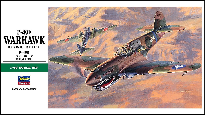 Hasegawa 1//48 P-40E Warhawk United Model Inc HSGS9086