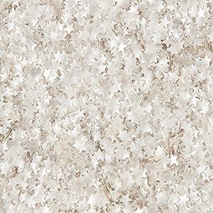Wilton Edible Glitter Silver Stars, 0.4 oz.