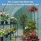 BenefitUSA New Large Walk-In Wall Greenhouse
