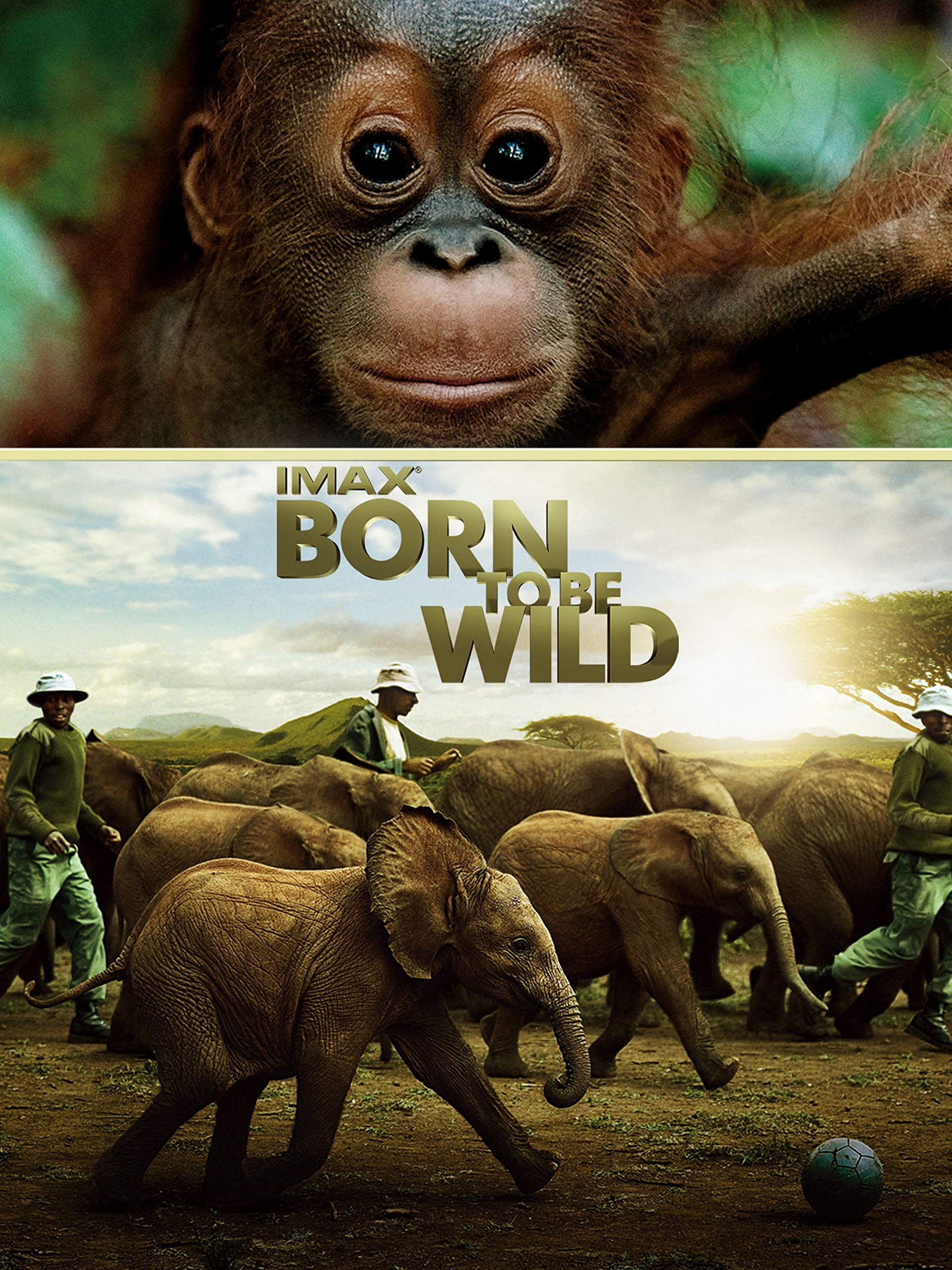 Watch IMAX Born to Be Wild | Prime Video