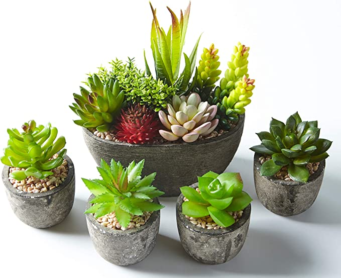 Artificial Succulent Plants with Stones, Ideal for Home, Office and Outdoor Decor, Set of 5