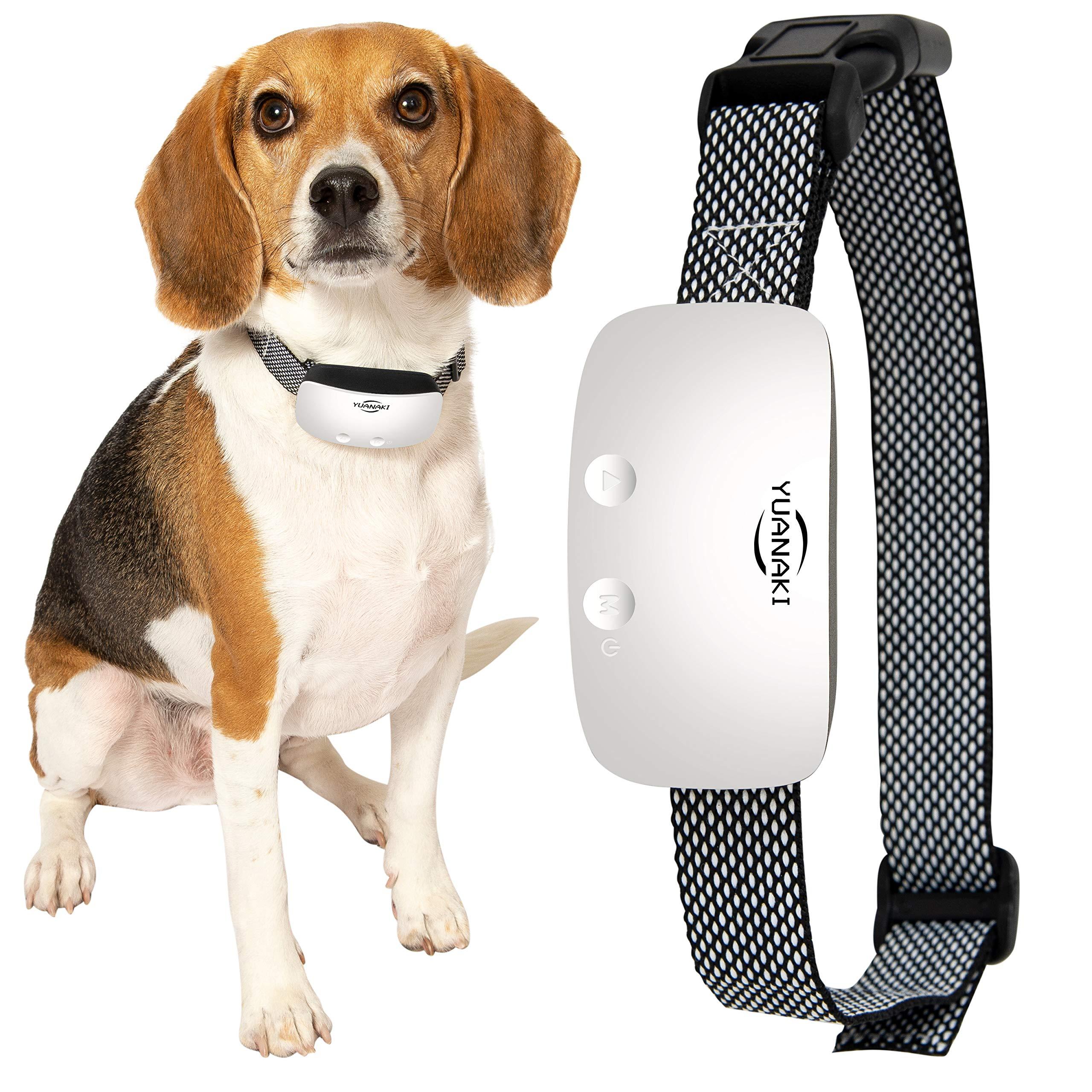 Yuanaki Anti Bark Dog Collar - Backlight LED, IP67 Waterproof, Adjustable, USB Rechargeable - Gentle Shock, Vibration, Beeping - Antibarking Correction and Training Supplies - Smart Automatic Sensor by Yuanaki
