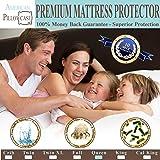 Queen : Queen Size Mattress Protector Hypoallergenic Waterproof - Vinyl Free - Fitted Sheet Style