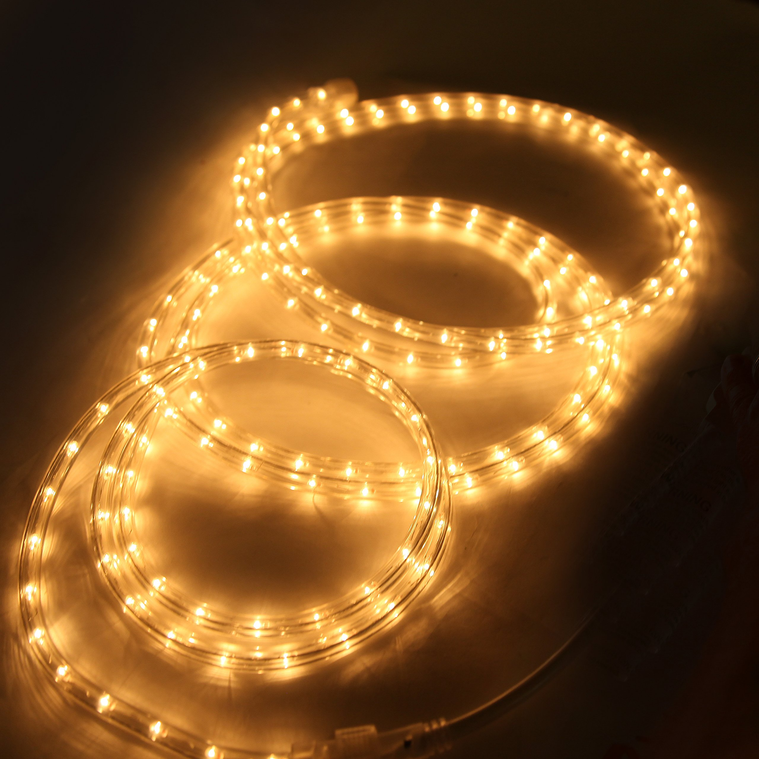 Indoor and outdoor rope lights 18 feet 216 clear incandescent indoor and outdoor rope lights 18 feet 216 clear incandescent rope light pack of 2 total 36 feet length aloadofball Choice Image
