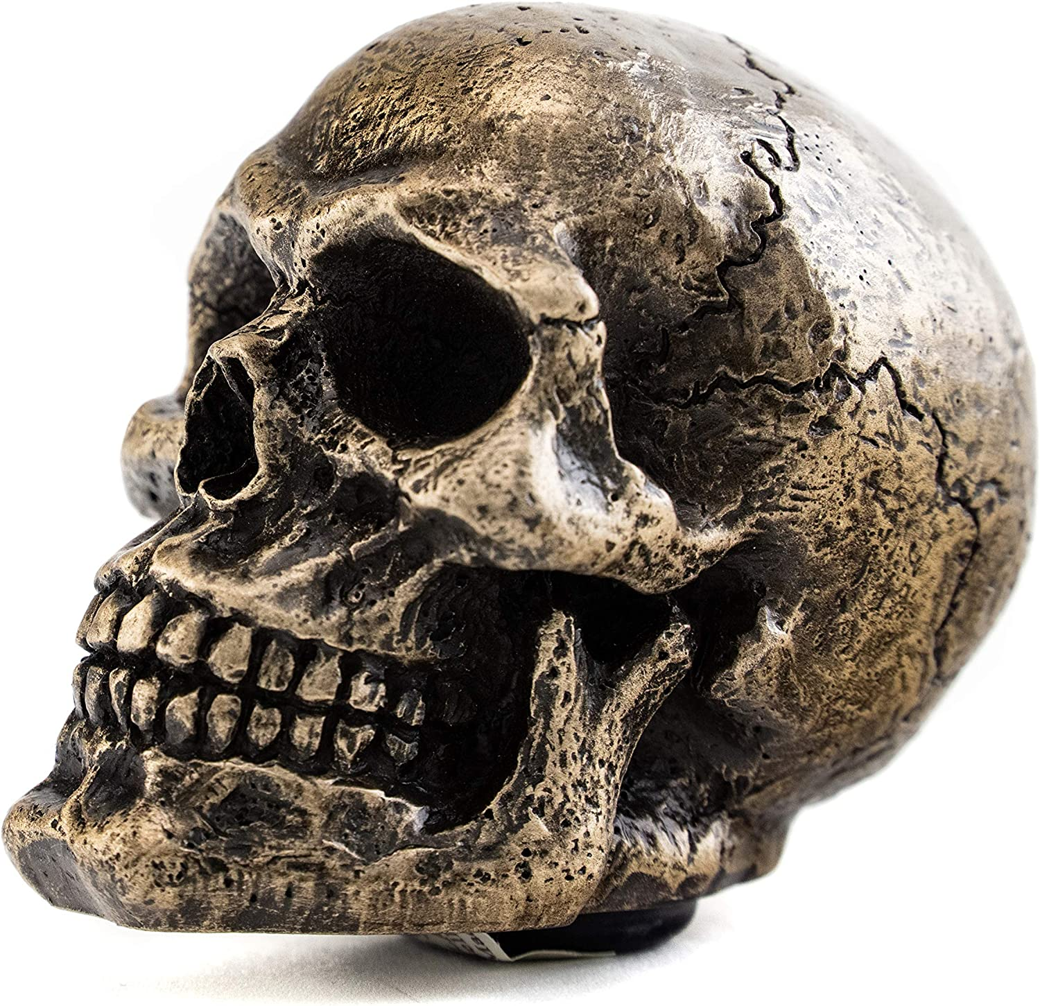 Top Collection Gothic Skull Shift Knob in Cold Cast Bronze- 2.25-Inch Sculpture-Perfect Car Decor