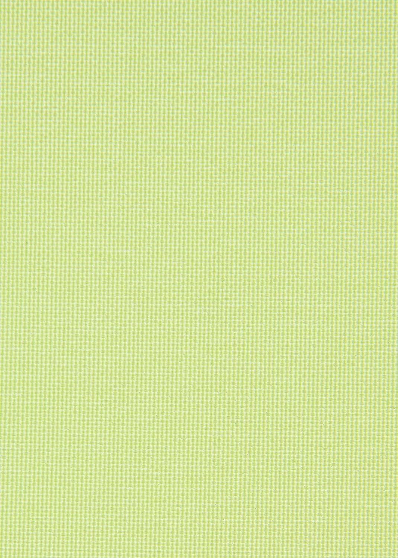 Tenda a Rullo Verde 60/x 150/cm Senza Viti Montaggio Senza forare Visione Protezione Laterale Treno avvolgibile Morsetto Luce Diurna