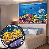 Póster Cuarto de niño Acuario Mural Decoración Mundo submarino Criaturas marinas Océano Peces Defín Tortuga Arrecife | foto póster mural imagen deco pared by GREAT ART (140 x 100 cm)