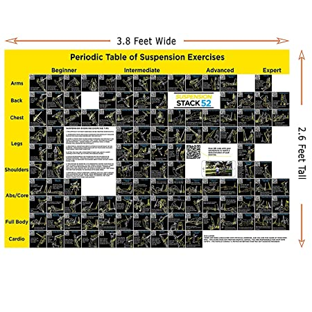 Buy suspension exercise poster periodic table of suspension buy suspension exercise poster periodic table of suspension exercises by stack 52 for all suspended bodyweight trainer straps video instructions included urtaz Gallery