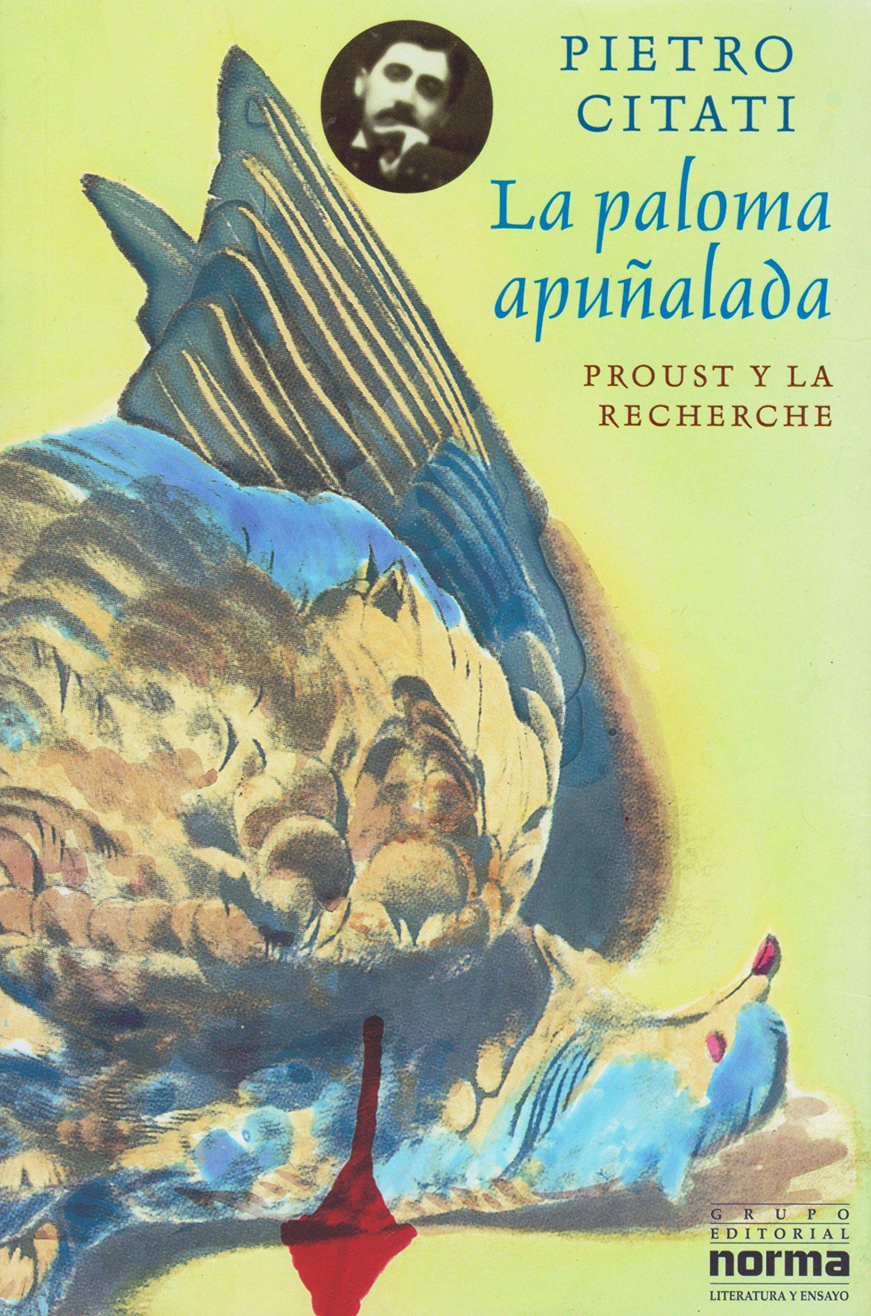 La Paloma Apunalada: Proust y la Recherche (Spanish Edition): Pietro Citati, Guillermo Piro: 9789580434436: Amazon.com: Books