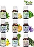 Kalp Pack Of 9 Essential Oil- 15 Ml Each (Tea Tree, Frankincense, Peppermint, Eucalyptus, Orange, Lavender, Ylang Ylang, Lemongrass, Rosemary)