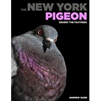 New York Pigeon, The ; Behind the Feathers