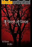 It Sleeps at Dawn