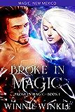Broke In Magic: Broke In Magic - Book 1 (Magic New Mexico 45)
