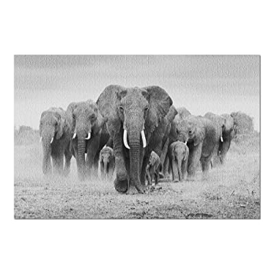 Elephant Herd (Premium 1000 Piece Jigsaw Puzzle for Adults, 20x30, Made in USA!): Toys & Games