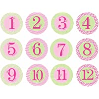 Pearhead First Year Monthly Milestone Belly Stickers, Pink