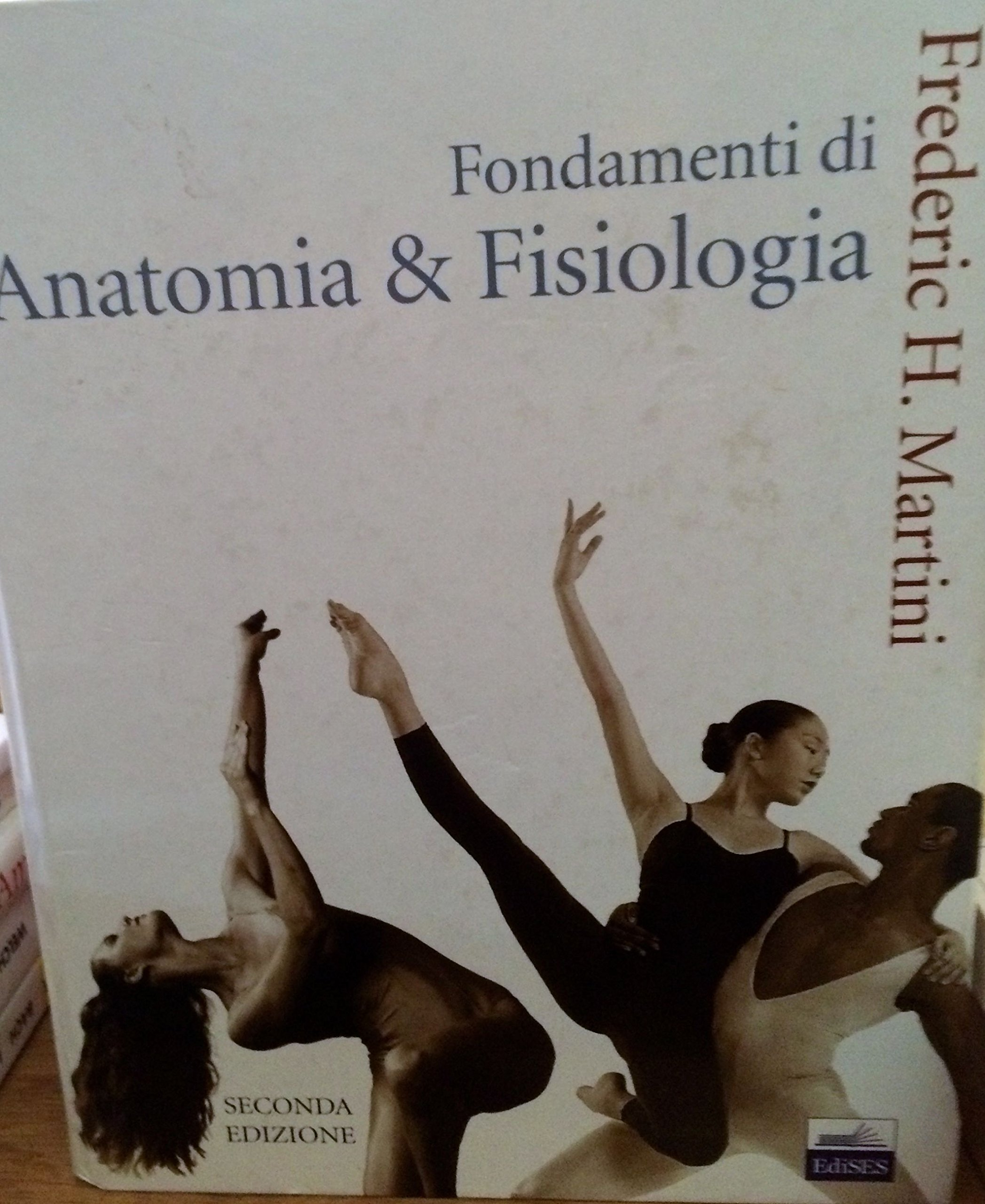 Magnífico La Anatomía Y La Fisiología De Martini Patrón - Imágenes ...