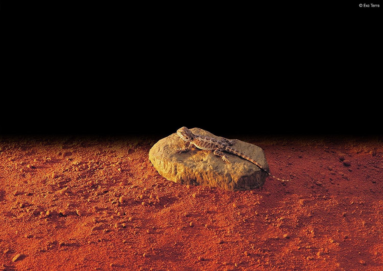 Exo Terra Heatwave Rock, Ul Listed Large PT2004
