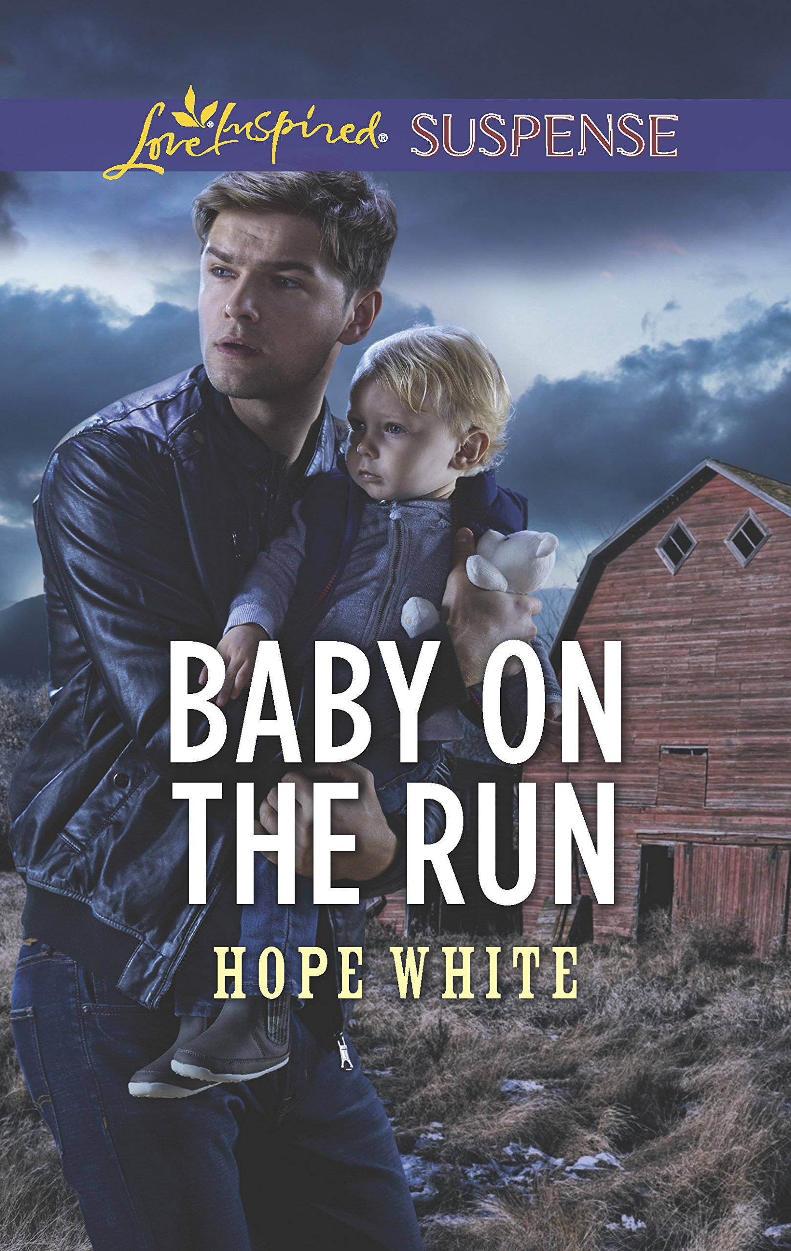 Download Baby on the Run (The Baby Protectors) pdf